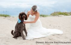 A bride and her dog - the perfect match! Daniel Pullen Photography http://www.outerbanksweddingassoc.org/membersearch/memberpage.html?MID=1847=Photographers=16 #dog #bride #pets #outerbanks #outerbankswedding #destinationwedding #beachwedding