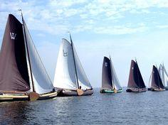 Sailboats ('skûtsjes') on Tjeukemeer, Friesland, northern Netherlands
