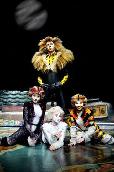 Jellicle Cats, Photo To Cartoon, Cats Musical, Curious Cat, Now And Forever, Choir, It Cast, Tours, History