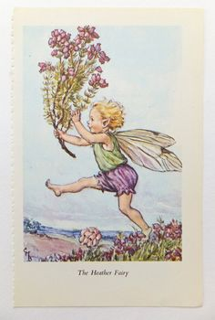 Heather Fairy by Cicely Mary Barker £4.50