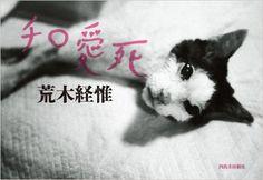 Amazon.com: Nobuyoshi Araki Cat (Japanese Edition) (9784309272122): Edited: Books