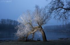 https://flic.kr/p/PtCtQQ   Blue morning   fb page: www.facebook.com/ZoltanGyoriPhotographer/