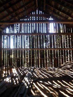Farm Life - quality of light