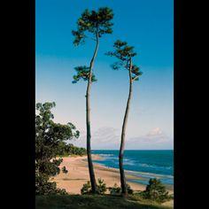 Les plages de l'Uruguay forment un petit bout de paradis