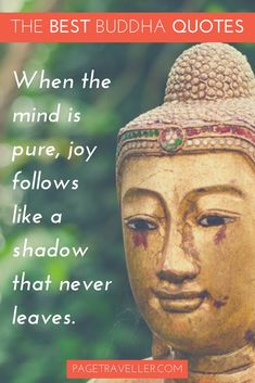 Quotes About Life :Buddha Quote Happiness   Gold Statue