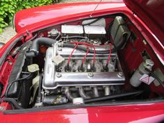 1965 Alfa Romeo Giulia 1600 Spider Veloce