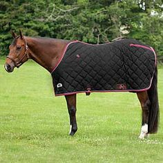 Rockin' SP Quilted Stable Blanket - Stable Blankets from SmartPak Equine