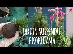 ☯ DIY : comment faire un kokedama ☯ - Blog lifestyle déco