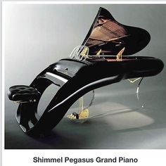 this might be a cool piano for the living room...