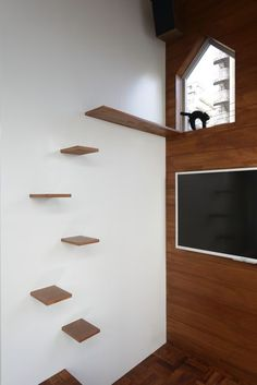 cat stairs- not the best thing for cats who are too old to jump. My cat is 14 years old and cannot jump very well anymore
