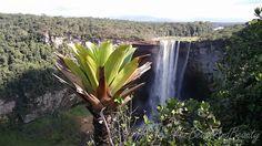 Guyana 2016 - TheBeastAndBeauty Canopy, Waterfall, Tours, Island, Outdoor, Outdoors, Waterfalls, Islands, Canopies