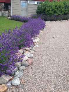 Could your home do with a little more garden landscaping? In fact you should be very excited about it because there is nothing more fun than garden landscaping, it will get your imagination worki Front Garden Landscape, House Landscape, Garden Paths, Lawn And Garden, Landscape Design, Landscaping With Rocks, Front Yard Landscaping, Landscaping Ideas, Back Gardens
