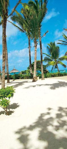 Constance Belle Mare Plage-Mauritius | LOLO