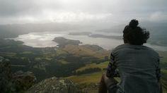 Cooper Snob Scenic Reserve, Chch, NZ