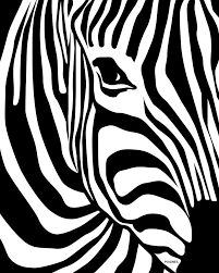 Image result for zebra print
