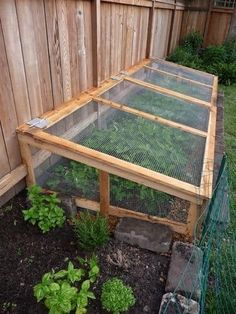 45 simple DIY raised garden bed design front and backyard landscaping ideas Raised Vegetable Gardens, Veg Garden, Vegetable Garden Design, Vegetable Gardening, Garden Shrubs, Raised Garden Bed Design, Gardening Tips, Cold Frame Gardening, Making Raised Garden Beds