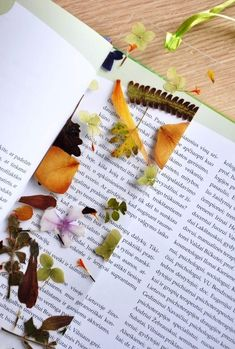Laminated, pressed flowers in the form of a bookmark - DIY - Blumen Pot Mason Diy, Mason Jar Crafts, Diy Home Decor Projects, Craft Projects, Projects To Try, Diy And Crafts, Crafts For Kids, Paper Crafts, Crafts For Book Lovers Diy