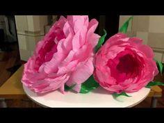 Ростовые цветы. Бутон - YouTube