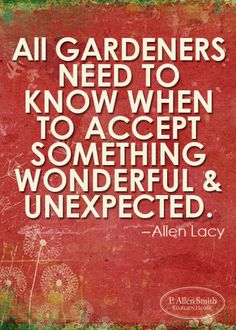 All Gardeners need to know when to accept something Wonderful & Unexpected.
