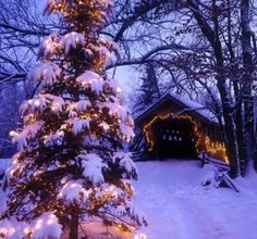 Christmas AND a covered bridge. Can't beat that.