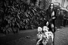 Mes Snapshots, des belles photos sexy et glamour en noir et blanc Mans Best Friend, Best Friends, Exposition Photo, Lingerie Fine, Glamour, Michel, Belle Photo, Sunny Days, Black And White