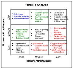 McKinsey GE Matrix Software for Product Portfolio Analysis and ...