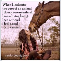 True, I think sometimes horses have more soul than humans, they can tell who is truly kind hearted and who isn't.