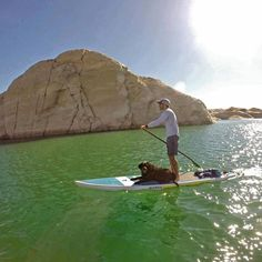 Lake Powell Paddleboards! Looks like a gorgeous day! And a cute dog too!