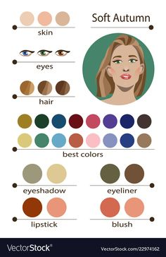 Stock vector seasonal color analysis palette for soft autumn. Stock vector seasonal color analysis palette for soft autumn. Best makeup colors for soft autumn type of female appearance. Face of young woman. Soft Autumn Deep, Dark Autumn, Soft Autumn Makeup, Fall Makeup, Color Me Beautiful, Deep Autumn Color Palette, Autumn Colours, Color Type, Seasonal Color Analysis