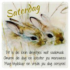 Evening Greetings, Afrikaanse Quotes, Goeie More, Beautiful Prayers, Good Morning, Animals, Language, Van, Night