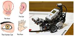 (left) Four drawings of human body parts (nose, ear, eye and hand/palm) representing four human senses (smell, hearing, sight and touch). (right) A photograph shows a LEGO MINDSTORMS NXT robot on a tabletop with light, touch and ultrasonic sensors attached.