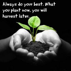 Always do you're best. #motivation #life