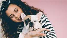 union canino humano