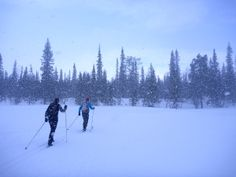 Ski tour from hut to hut in Lapland.  Saariselkä activities http://www.saariselka.com/individual/activities