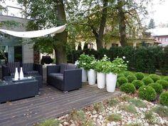 zimozielony ogród przy białym domu - Szukaj w Google