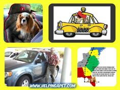 Cozy Pet Taxi Transport Coast to Coast USA , See here http://www.helpingapet.com/