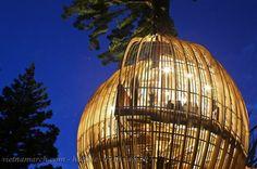 Treehouse - Thiết kế nhà cây độc đáo 08