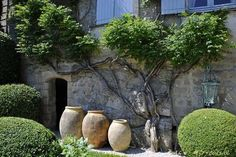 Biot jars in a french garden. Explore our range of made in Fra. Biot jars in a f Small Backyard Gardens, Backyard Garden Design, Back Gardens, Outdoor Gardens, Large Backyard, Garden Privacy, Garden Trellis, Garden Plants, French Courtyard