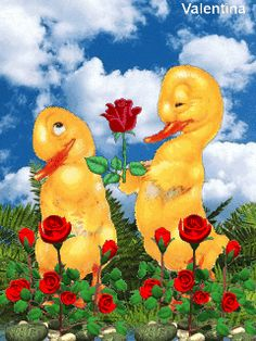 2 YELLOW DUCKLINGS IN A GARDEN OF ROSES