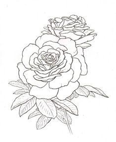 roses tattoo #roses #sketch #tattoo