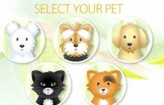 Play the online game and take care of your pet.