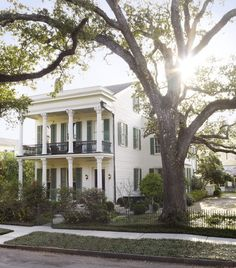 Southern Hospitality - Julia Reed's house in New Orleans. Interior design by Thomas Jayne of Jayne Design Studio. Landscape design by Ben Page of Page|Duke Landscape Architects.