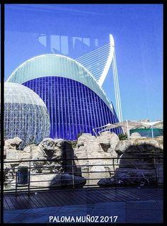 La cúpula del aviario y uno de los edificios más llamativos del Oceanografic. The dome of the aviary and one of the most striking buildings of the Oceanografic.
