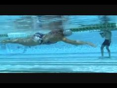 Total Immersion Swim