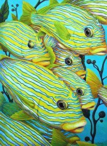 Sweetlip Tactics von Tim Marsh Oil ~ 16 Zoll x 11 und Zoll - Underwater Art, Underwater Creatures, Ocean Creatures, Underwater Shipwreck, Beautiful Sea Creatures, Animals Beautiful, Colorful Fish, Tropical Fish, Regard Animal