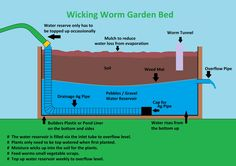 A worm bed that does not waterlog, yet never dries out - perfect for desert dwellers!