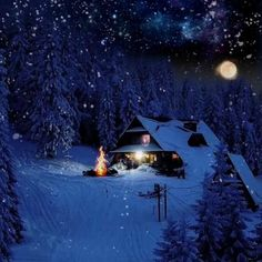 Beautiful Christmas Scenes, Winter Christmas Scenes, Merry Christmas Gif, Christmas Scenery, Winter Scenery, Christmas Night, Christmas Images, Beautiful Christmas Pictures, Snow Night