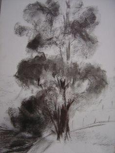 DESSIN arbre campagne Paysages Fusain  - mon arbre
