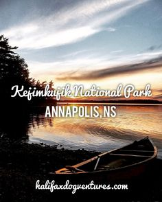 Kejimkujik National Park in Annapolis, NS East Coast Canada, Camping In Washington State, Dog Water Bowls, Canoe Camping, New Adventures, Nova Scotia, Dog Friends, National Parks, How To Memorize Things