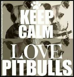 Keep calm and love pitbulls
